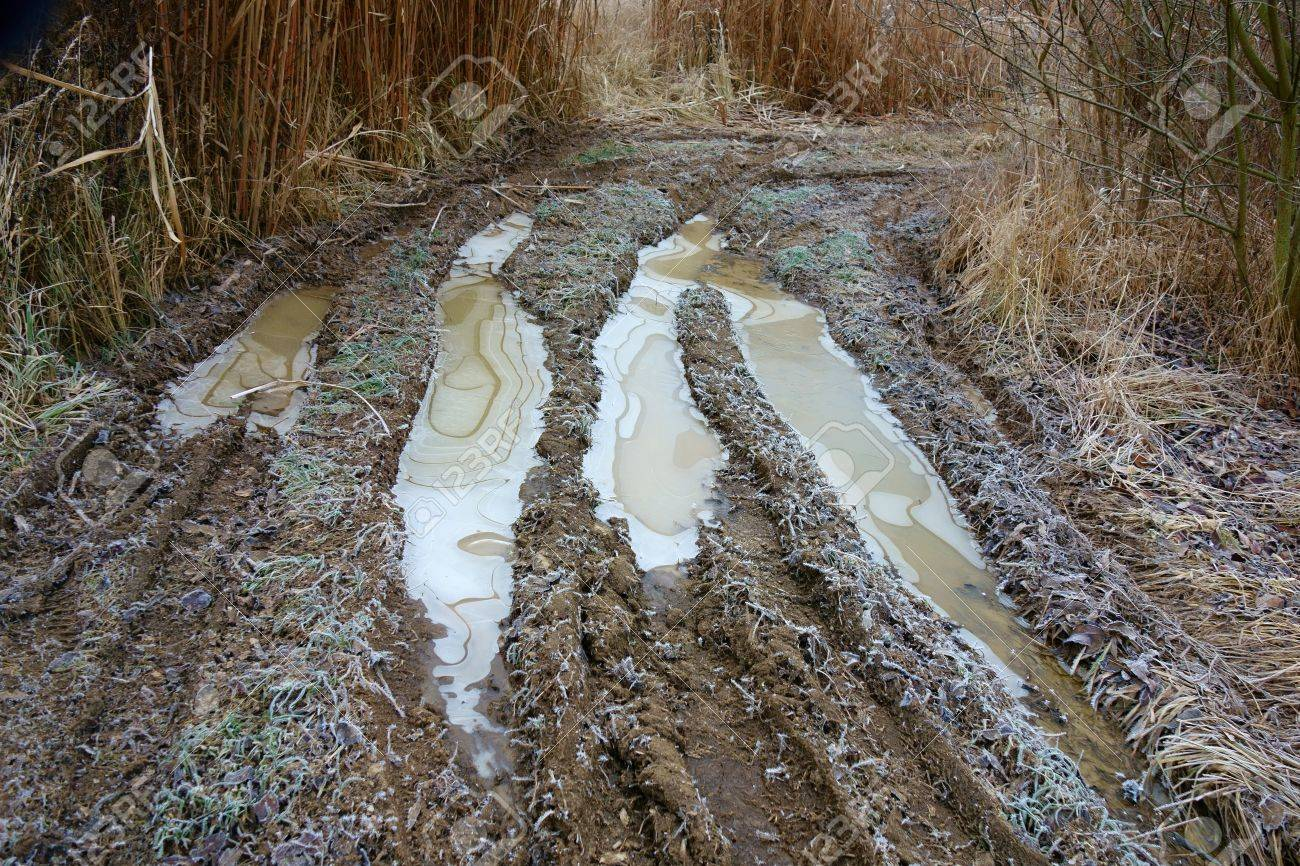 frozen dirty puddles on the rutted road among the reeds stock photo