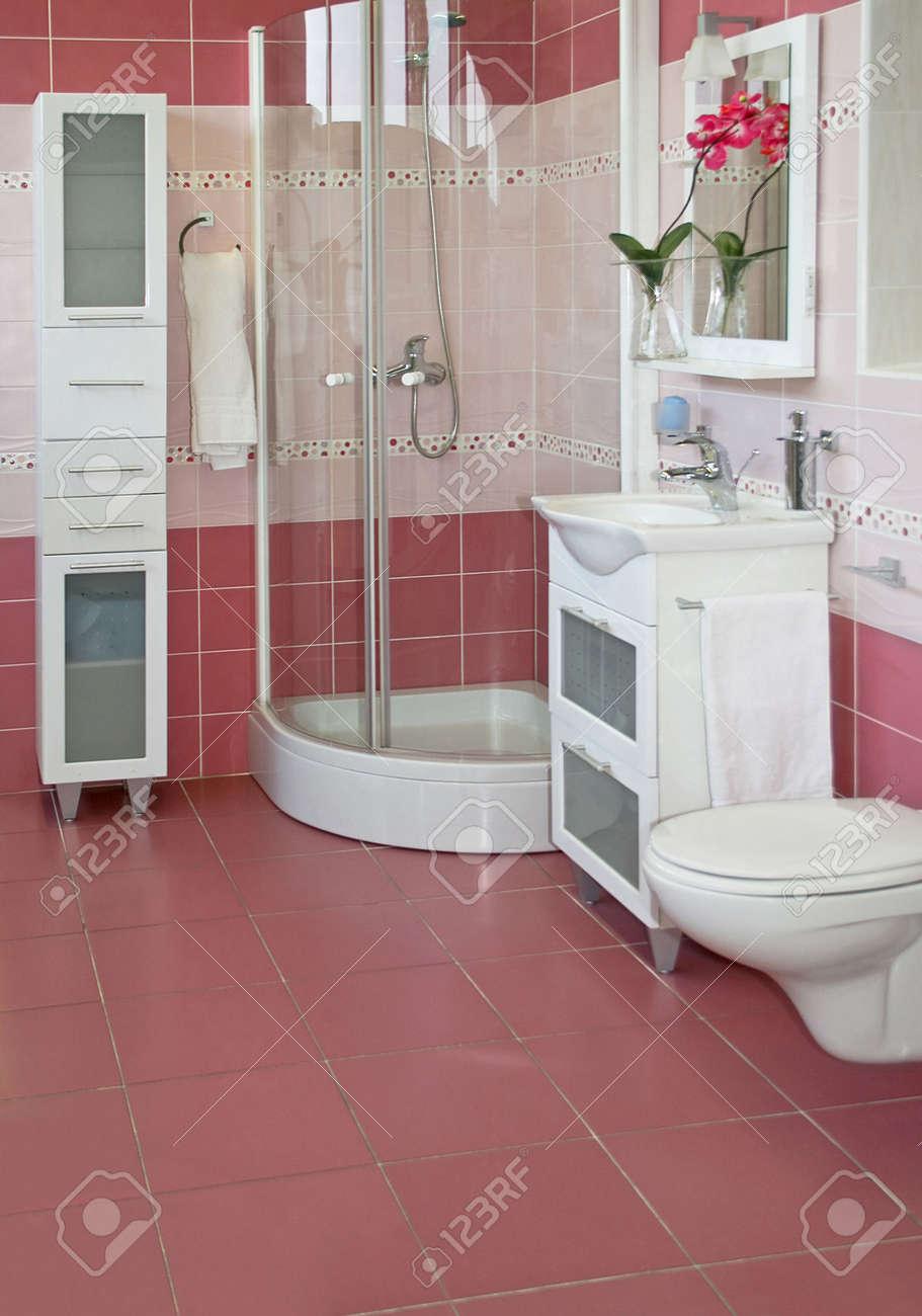 Grande salle de bains avec douche et mauve céramique