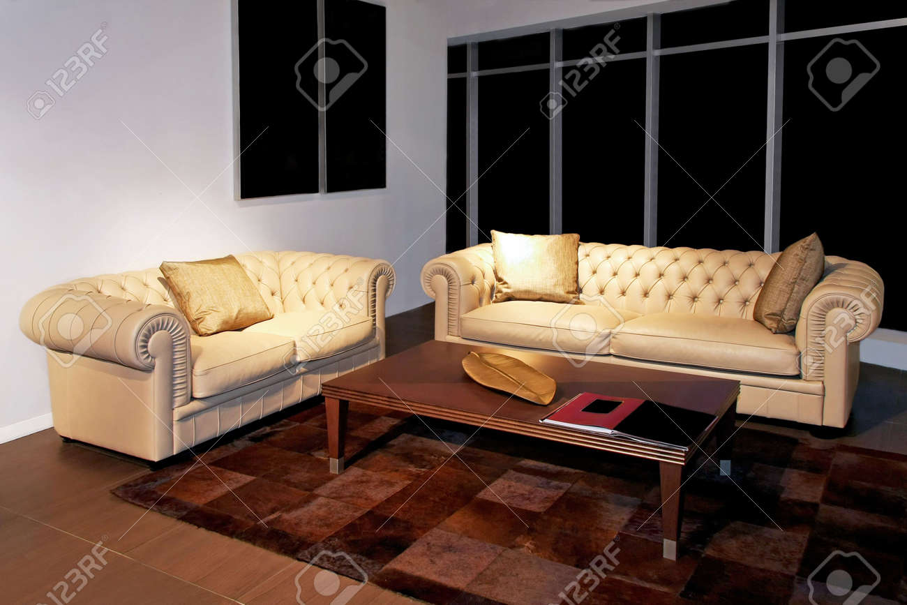 Classics living room with two leather sofas Stock Photo - 2691415