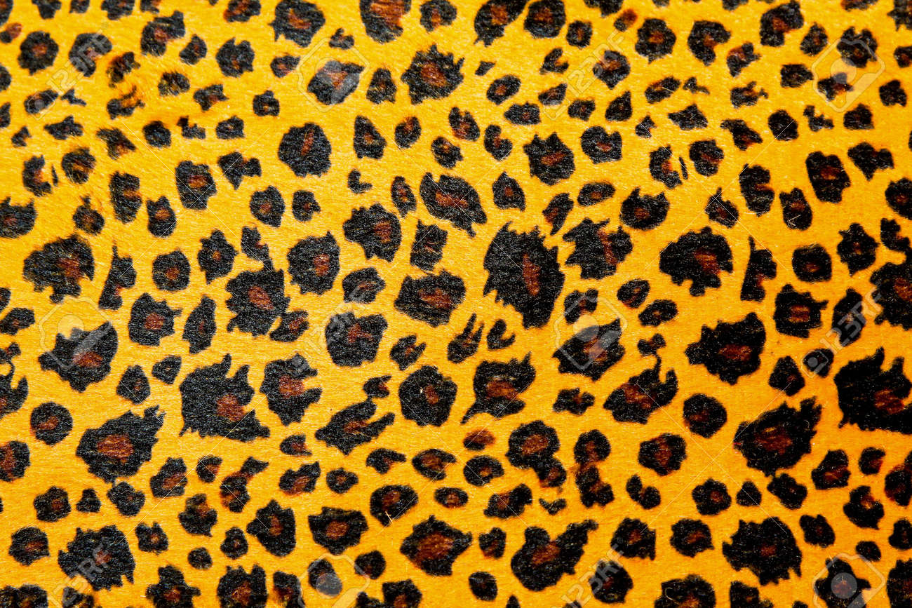 Detailed pattern of leopard animal print texture Stock Photo - 7388399