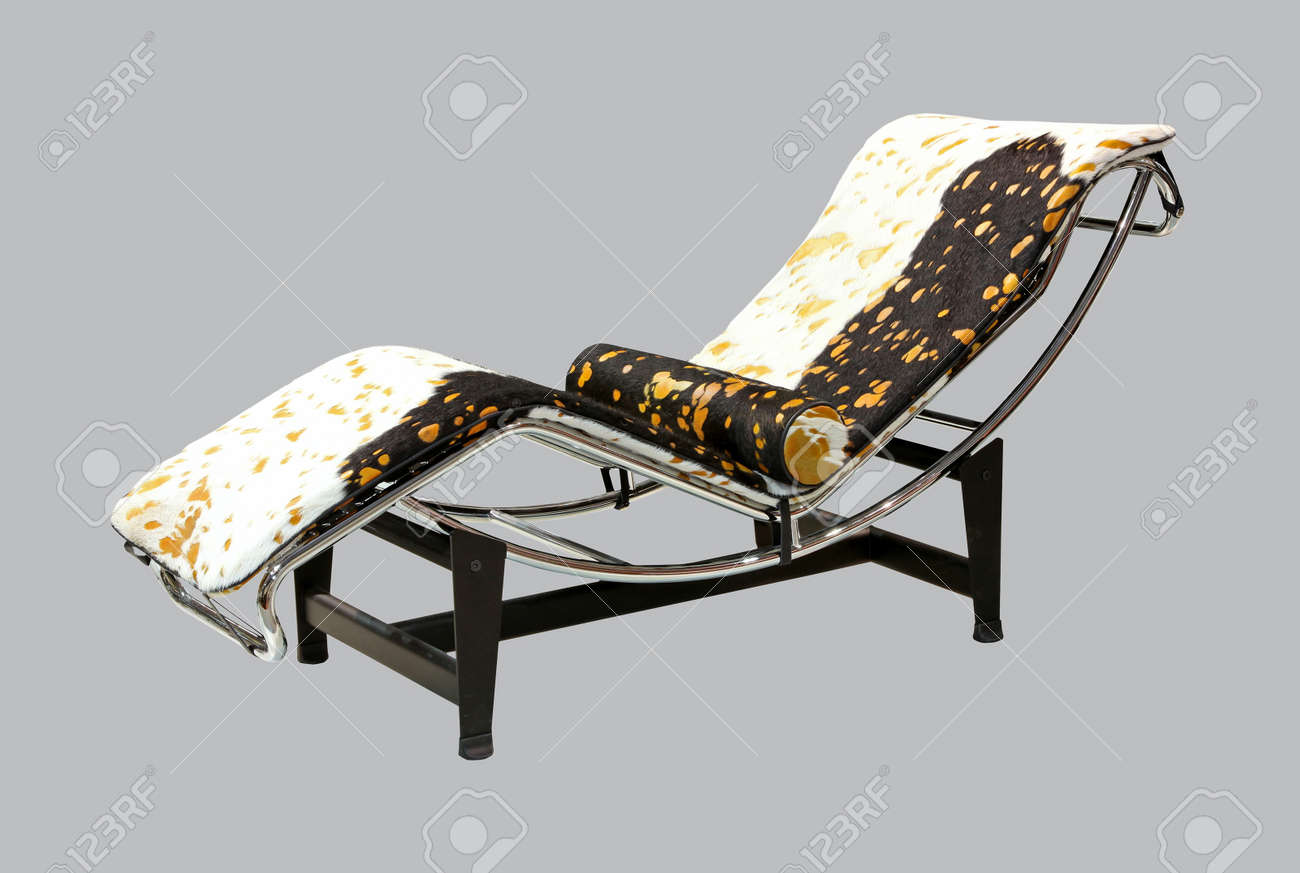 Animal Print Lounge Chair Stock Photo Picture And Royalty Free Image Image 10261392
