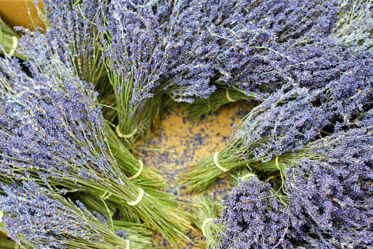 Dry lavender plant tied in a bunch sold on market Stock Photo - 17123489