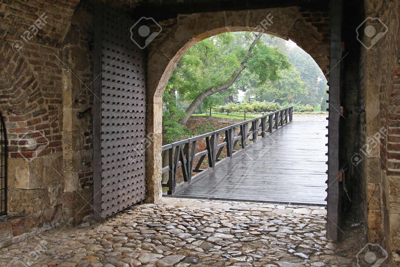 Double metal door entrance in medieval dungeon Stock Photo - 17150790