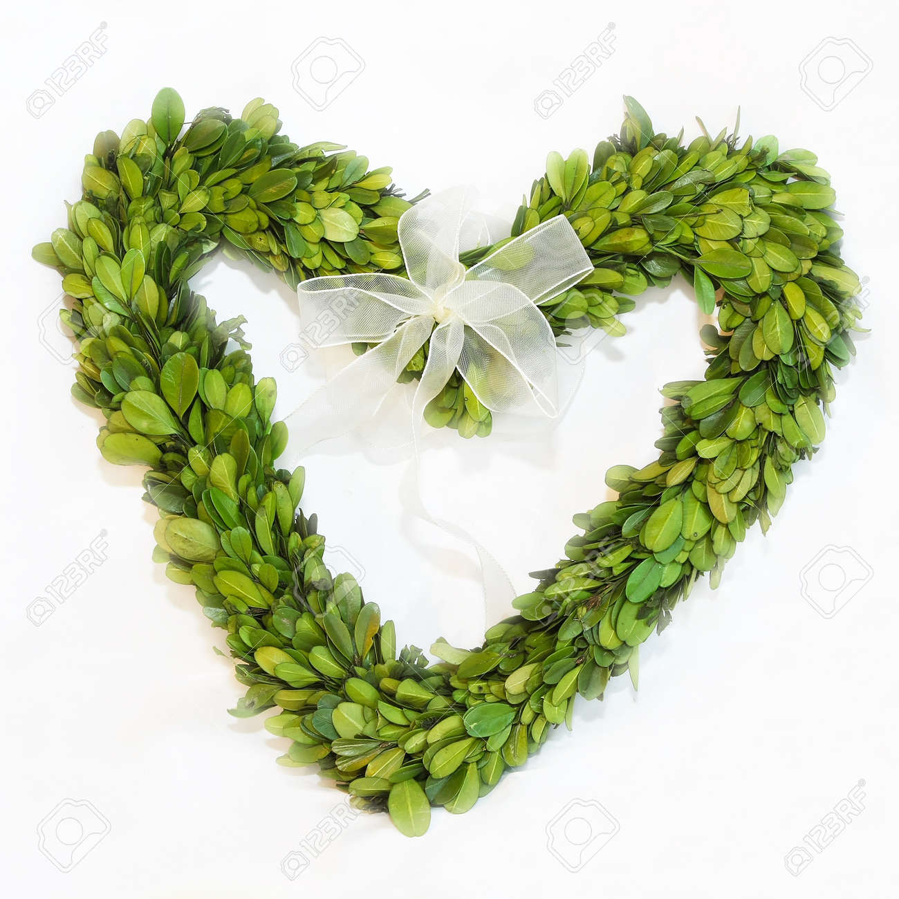 Natural green leaves wreath in heart shape Stock Photo - 17218663