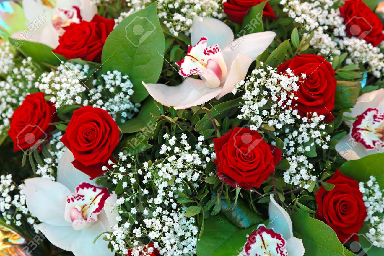 Rosas Rojas Y Flores Blancas Orquideas Ramo Fotos Retratos
