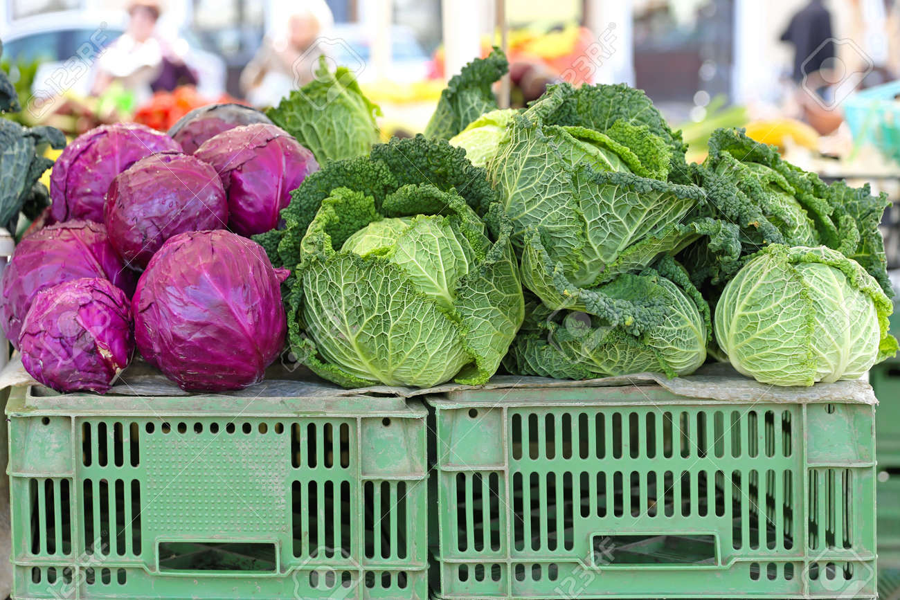 Purple And Savoy Cabbage At Farmers Market Stock Photo Picture And Royalty Free Image Image 33567576