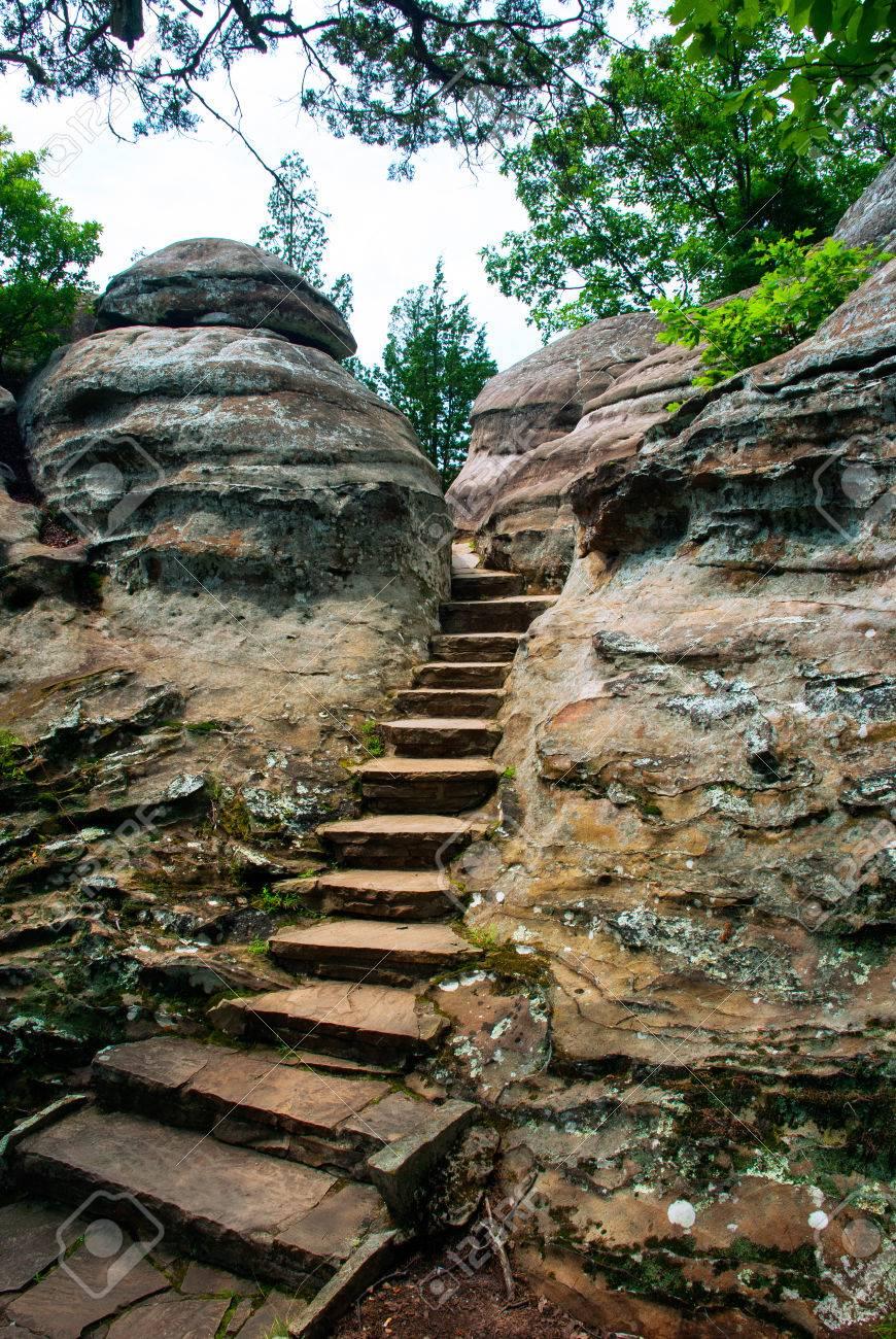 eine steintreppe in den felsen der garten der götter wildnis in