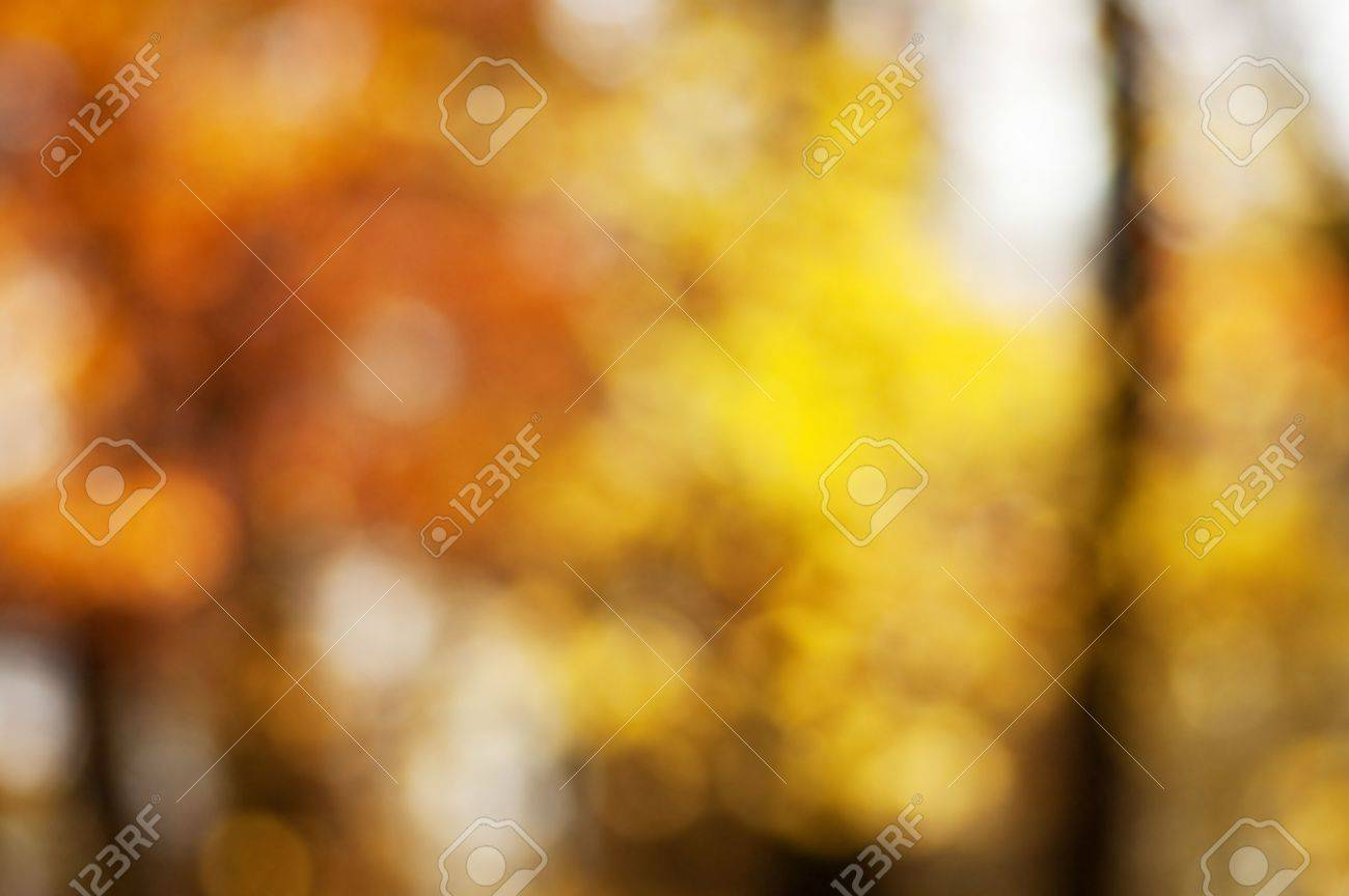 Blurred background of autumn forest with nice bokeh. Perfect as a background for studio portrait. Stock Photo - 5834604