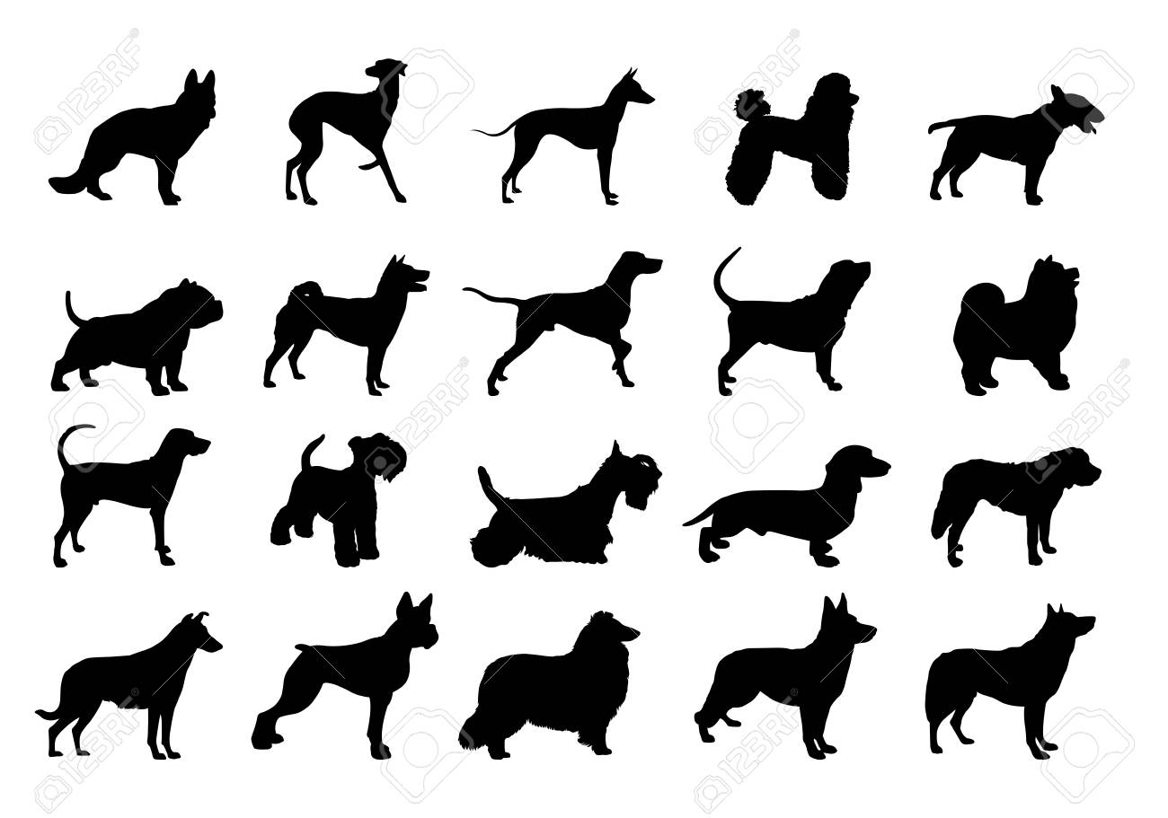 Collection Of Dogs Silhouette Silhouette Of The Dog Illustration Royalty Free Cliparts Vectors And Stock Illustration Image 92817509