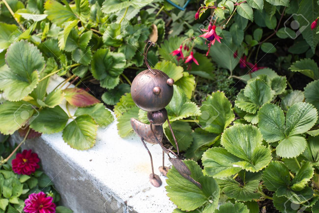 worker ant in the garden, funy picture Stock Photo - 15071875