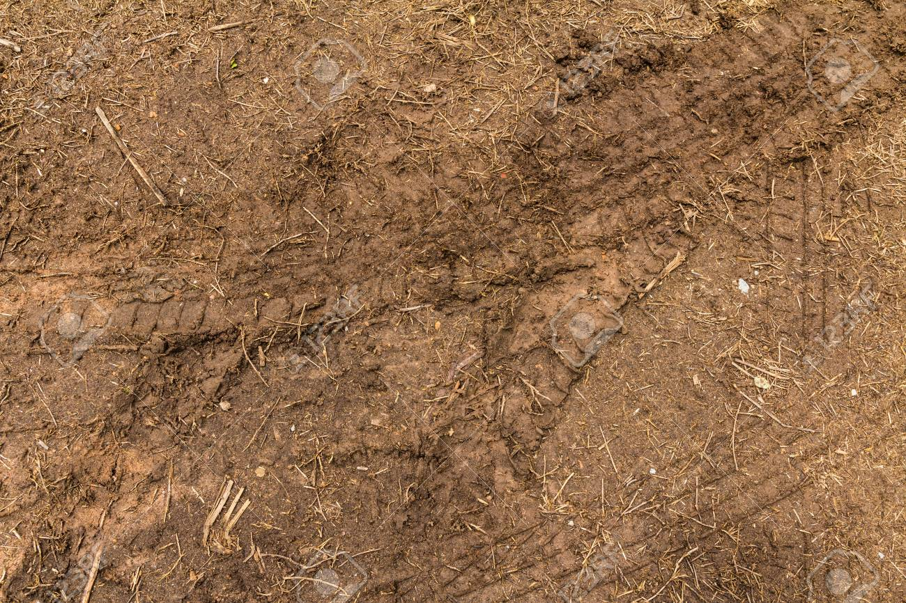 The trace of a tyre in the soil Stock Photo - 21015276