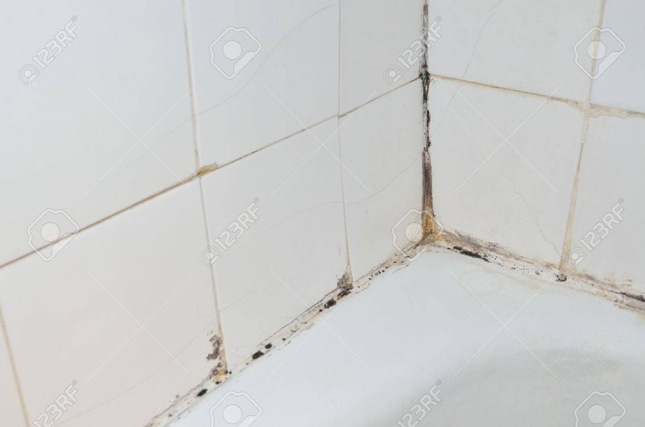 Mold And Scale On Old Bathroom Walls Stock Photo   45162991