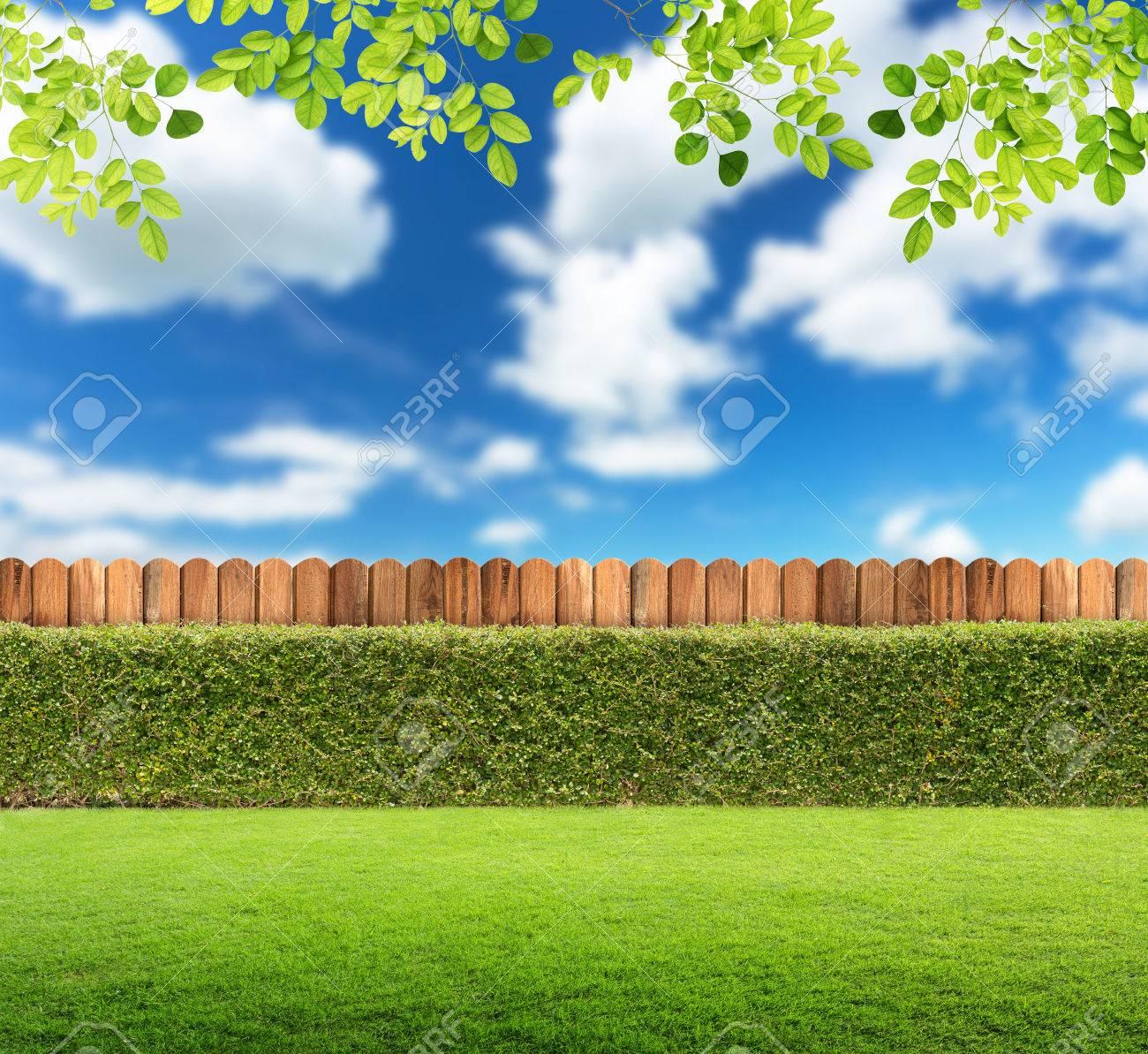 Download 770+ Background Garden HD Terbaik
