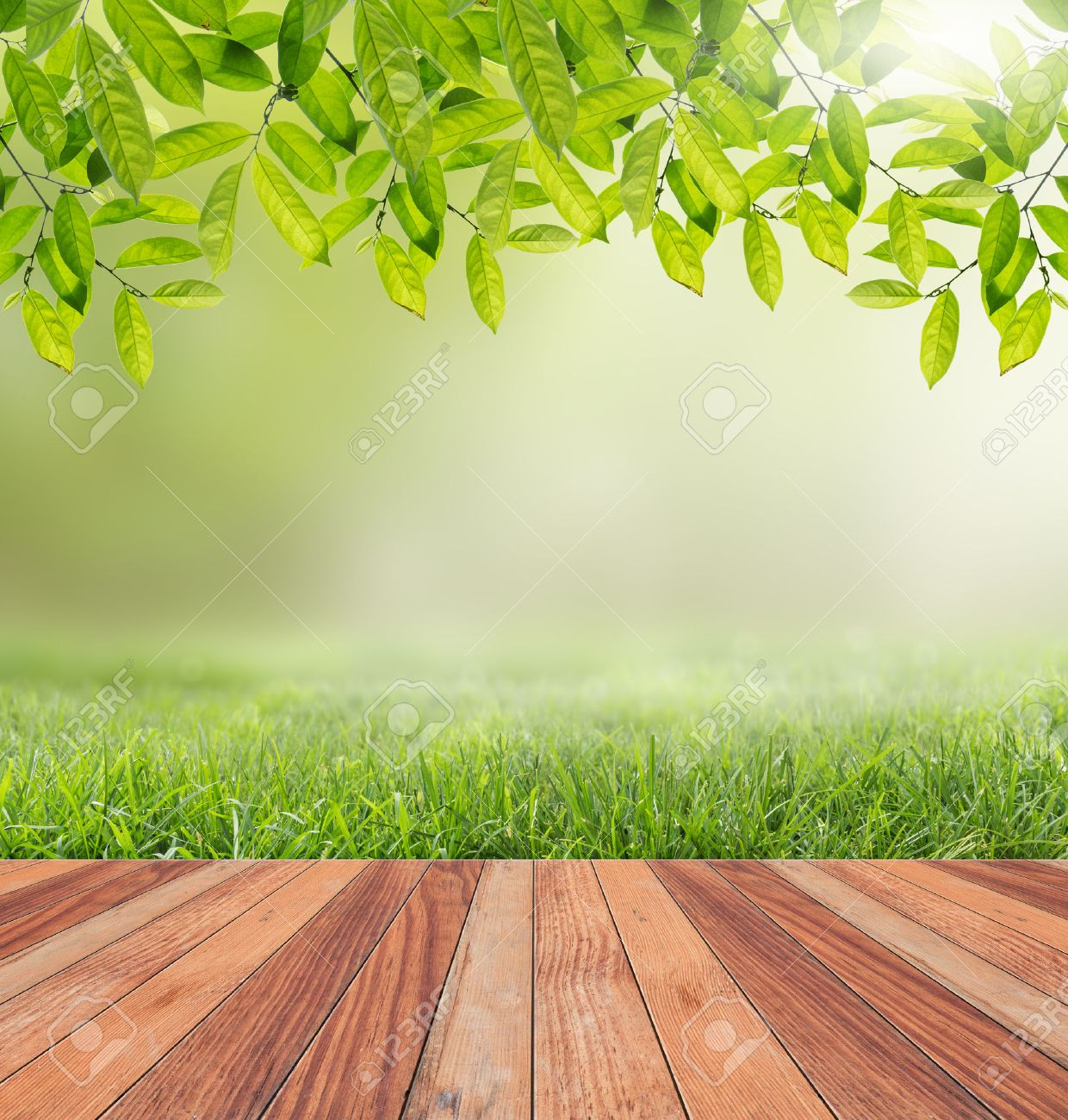 wooden floor and sunlight nature background stock photo picture