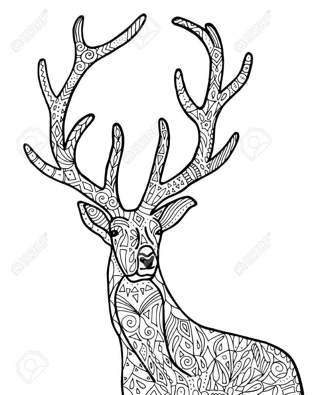 Mano De Vector Dibujado Ilustración De Ciervos Para Colorear Para ...