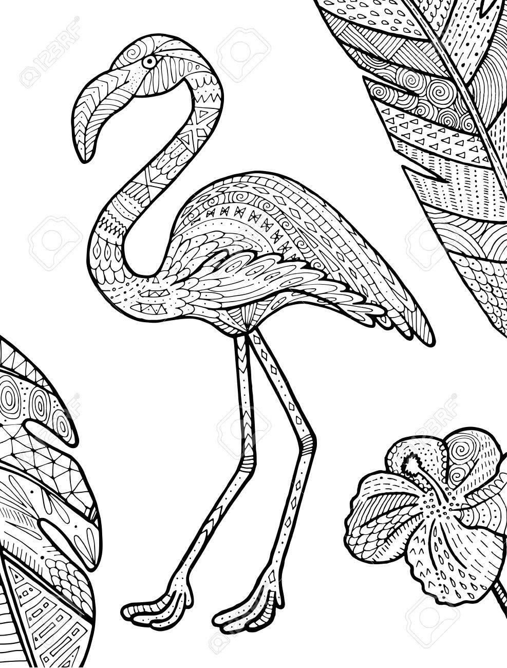 Ilustración Tropical Del Flamenco Del Vector Para El Libro De