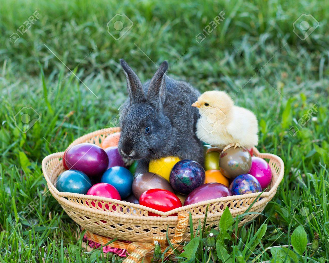 Tradition - Easter Bunny And Chick In A Basket Full Of Easter ...