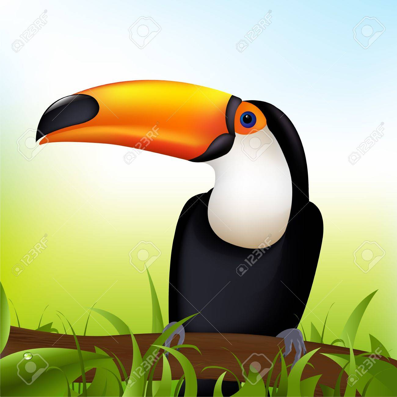 Toucan sitting on a branch under a blue sky Stock Vector - 9369429