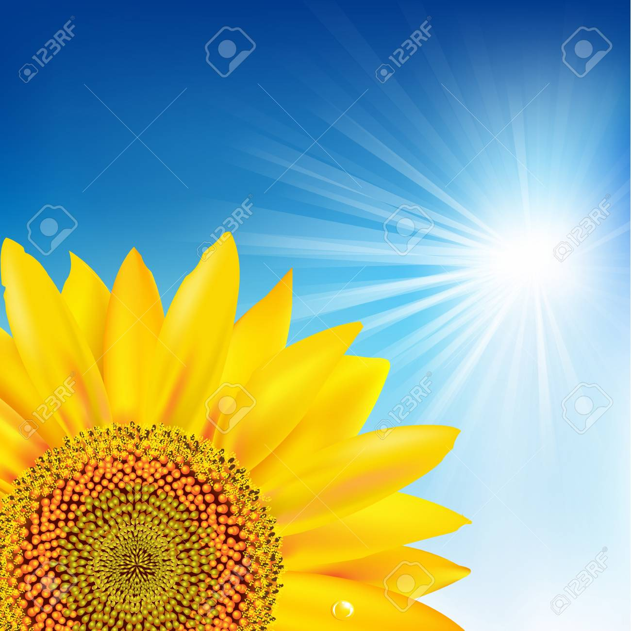 Blue Sky And Sunflower. Stock Vector - 11097663