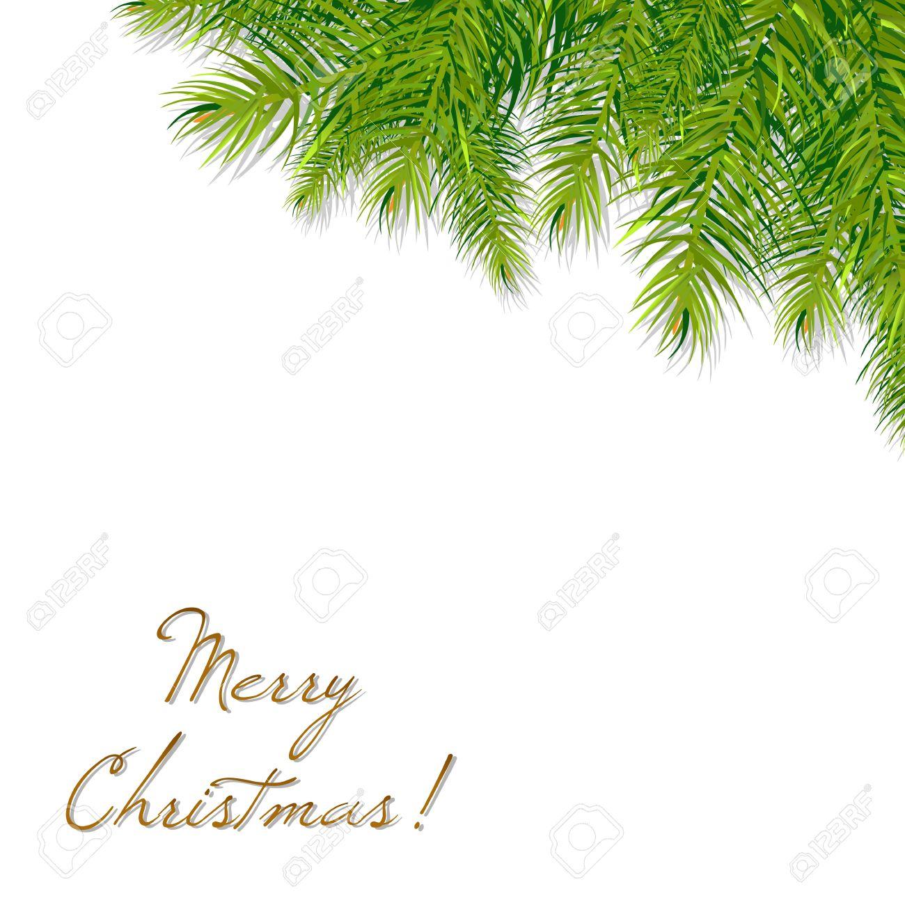 Christmas Branch Vector.Christmas Tree Branch Vector Illustration