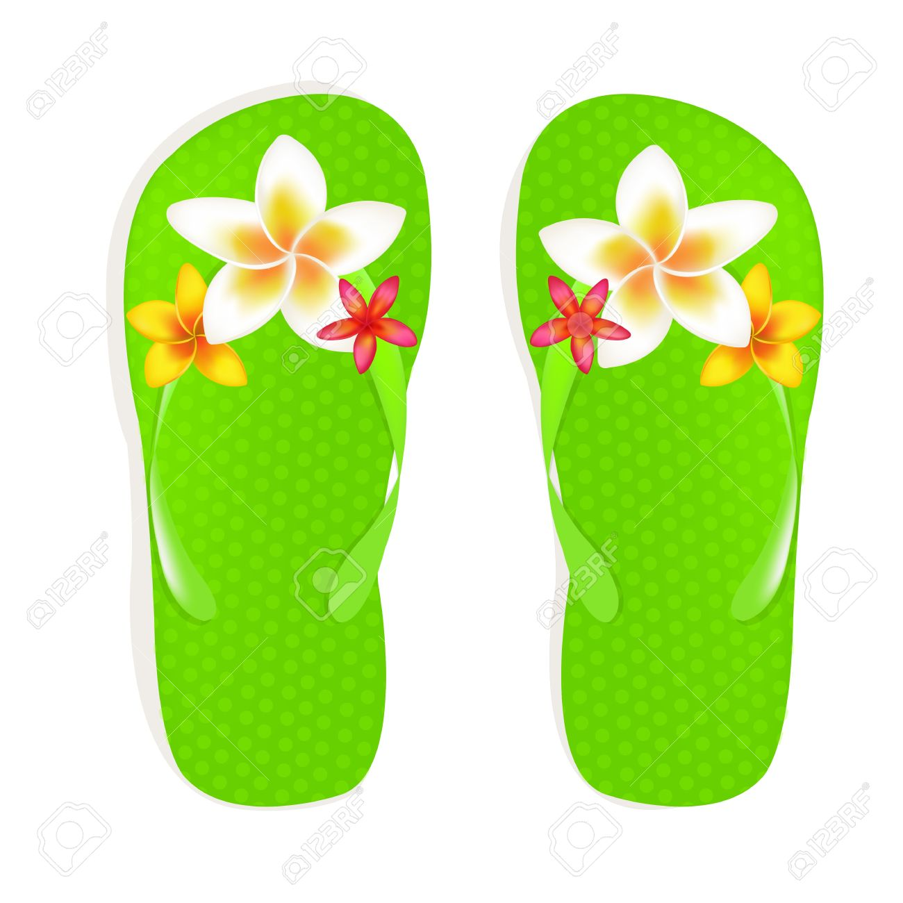 Flip Flop Sandals With Plumeria Flowers Isolated On White