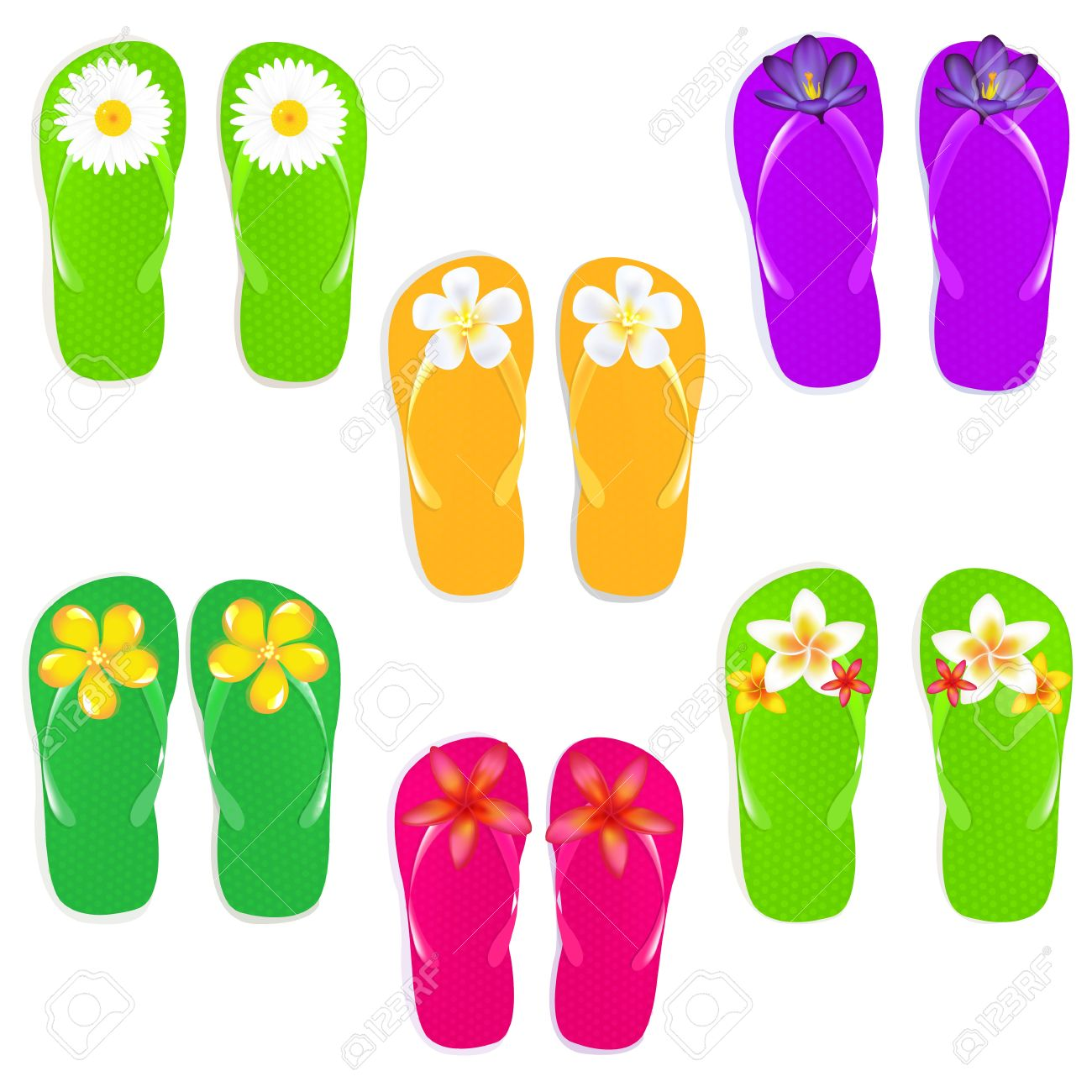6 Flip Flops With Flowers Isolated On White Background Royalty Free