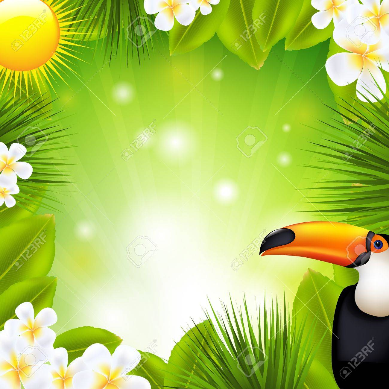 Green Background With Tropical Elements, Vector Illustration Stock Vector - 14513225