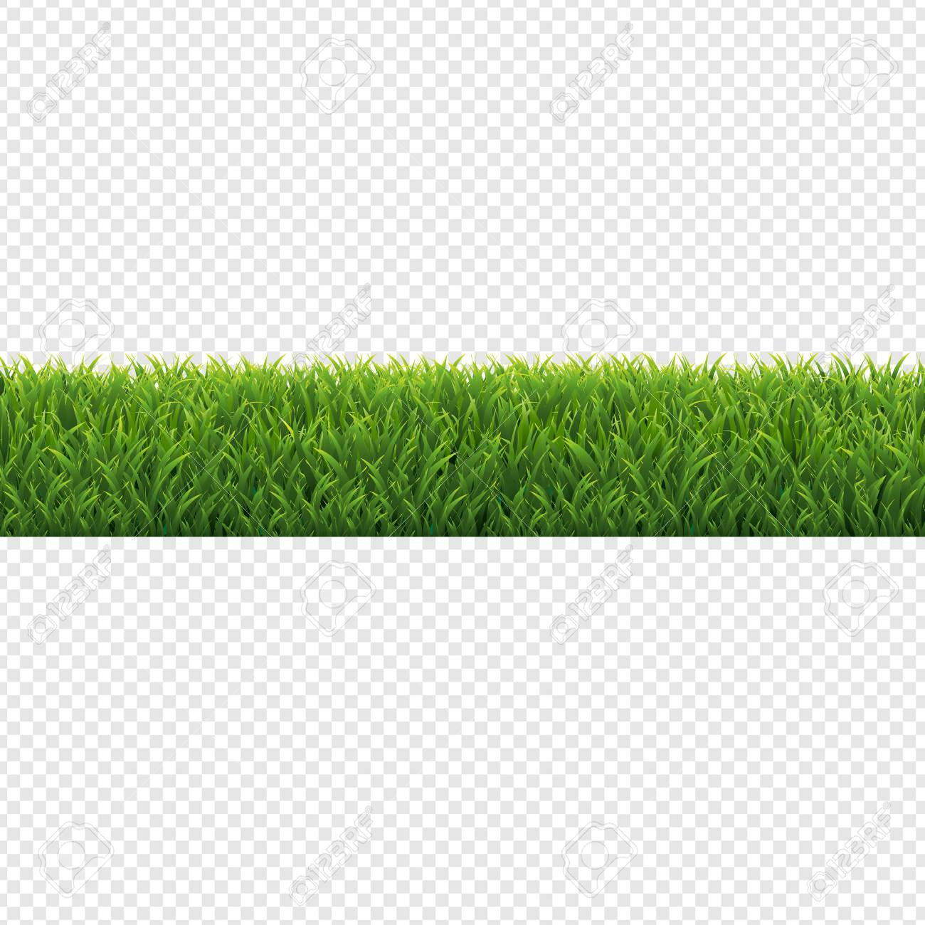 grass border no background summer green grass border transparent background vector illustration stock 108090842