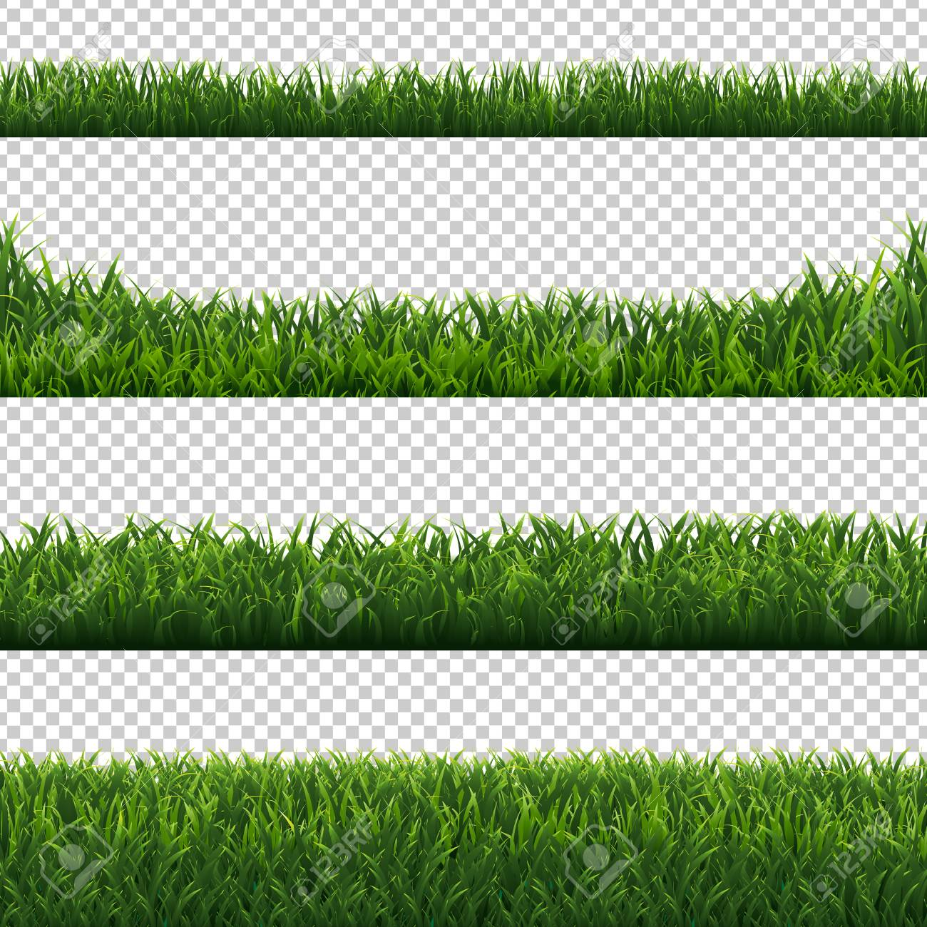 Green Grass Borders Set Transparent Background With Gradient Mesh, Vector Illustration - 125822613