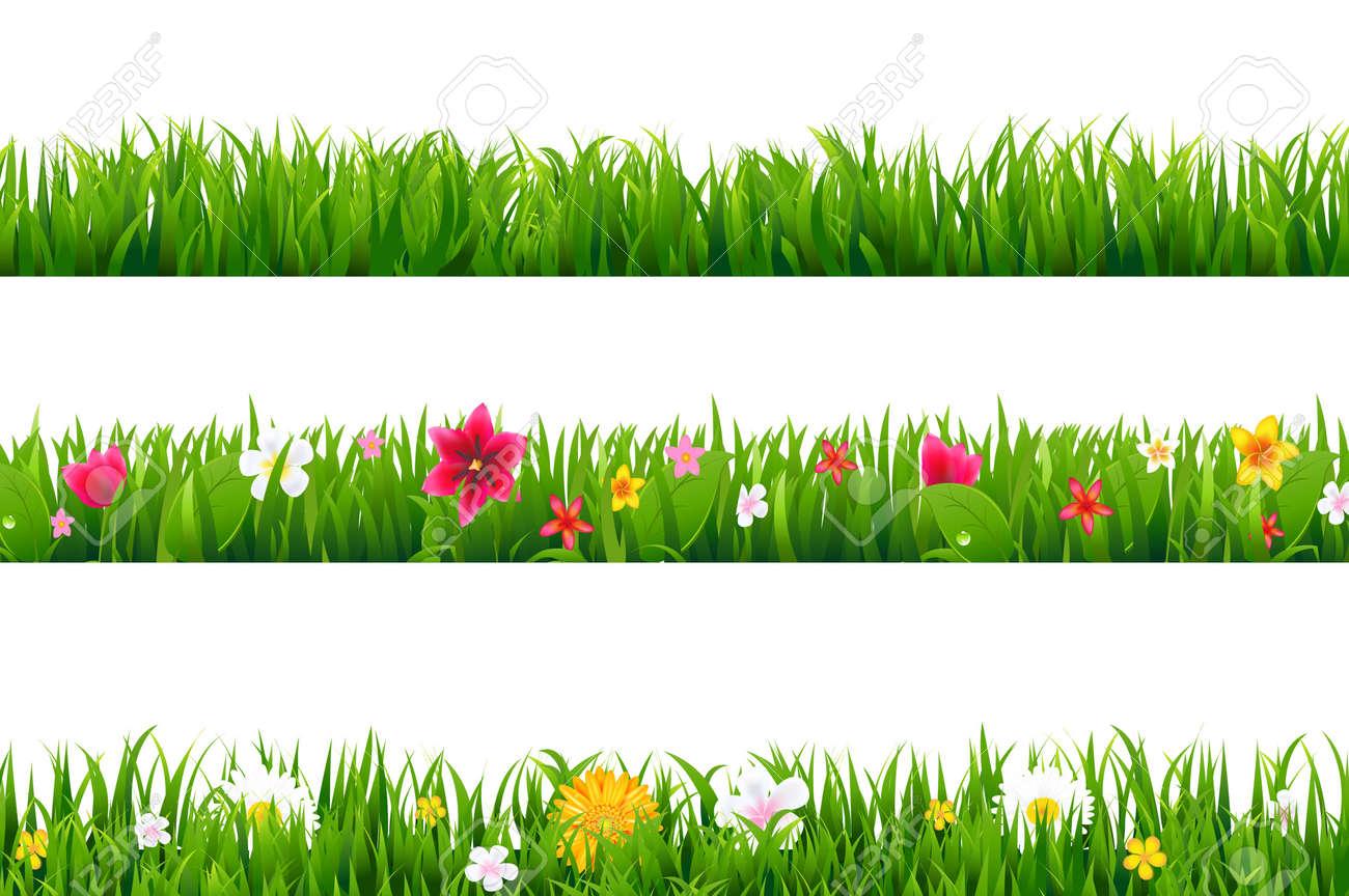 Grass Borders Set With Gradient Mesh, Vector Illustration - 165097579