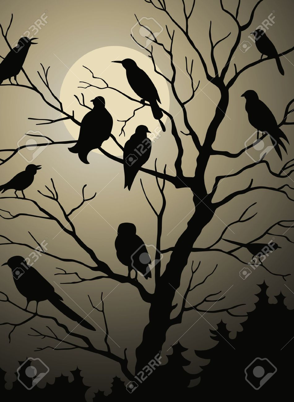 Birds on the tree in the night forest Stock Vector - 10296998