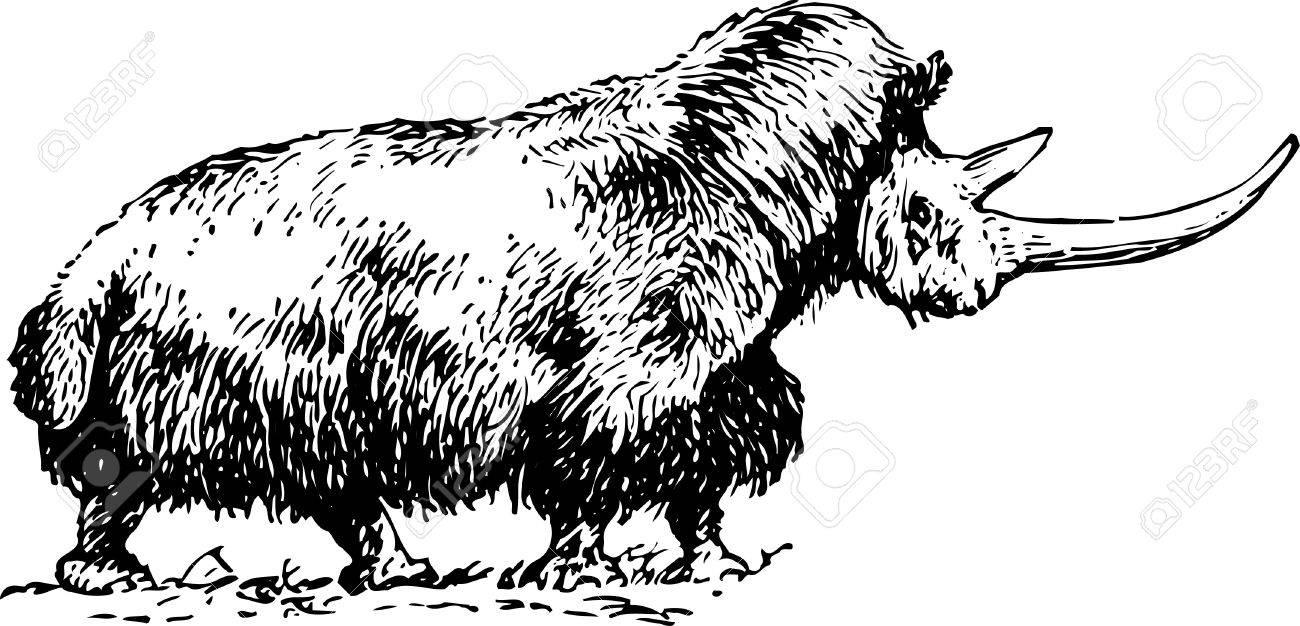 Old rhinoceros Stock Vector - 10402118