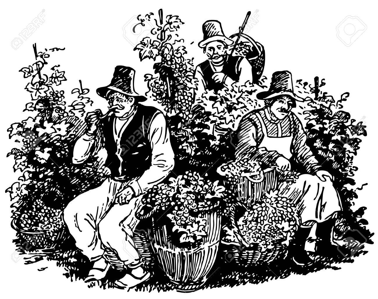 Vine pickers having a rest Stock Vector - 11918912
