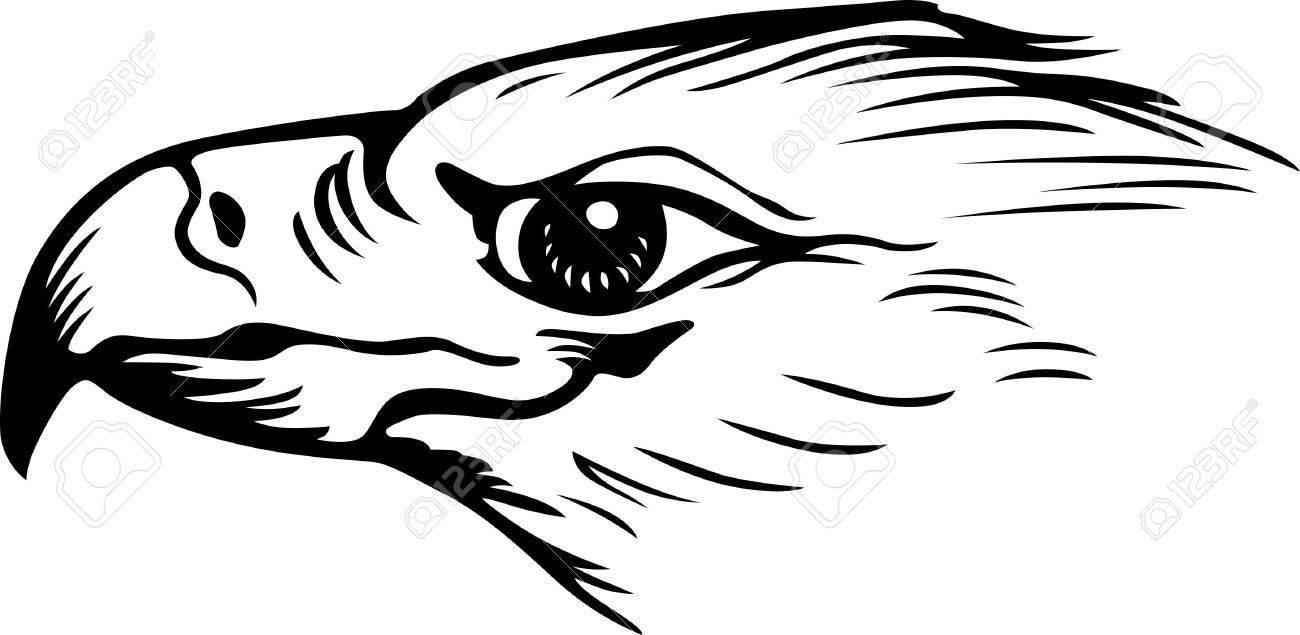 Eagle s head close-up  tattoo   Eagle Head Symbol