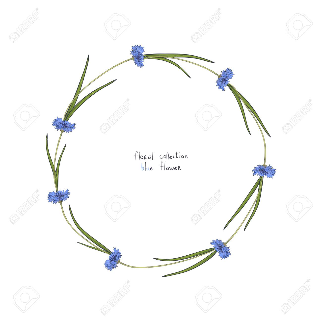 Floral wreath with stylized blue flowers of cornflowers and green floral wreath with stylized blue flowers of cornflowers and green leaves hand drawn vector illustration izmirmasajfo