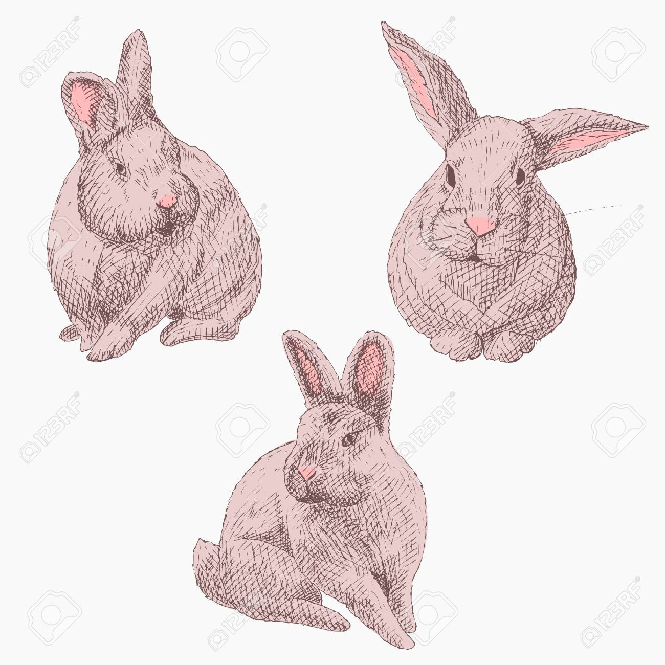 Set of rabbits hand drawn pencil sketch stock vector 97321279