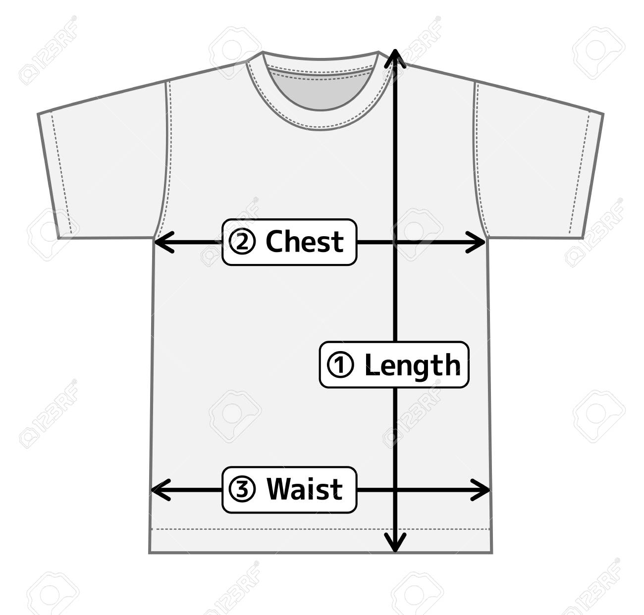 Shirt Diagram Vector Worksheet And Wiring Force T Illustration For Size Chart Royalty Free Cliparts Vectors Rh 123rf Com Biology Basic In Physics