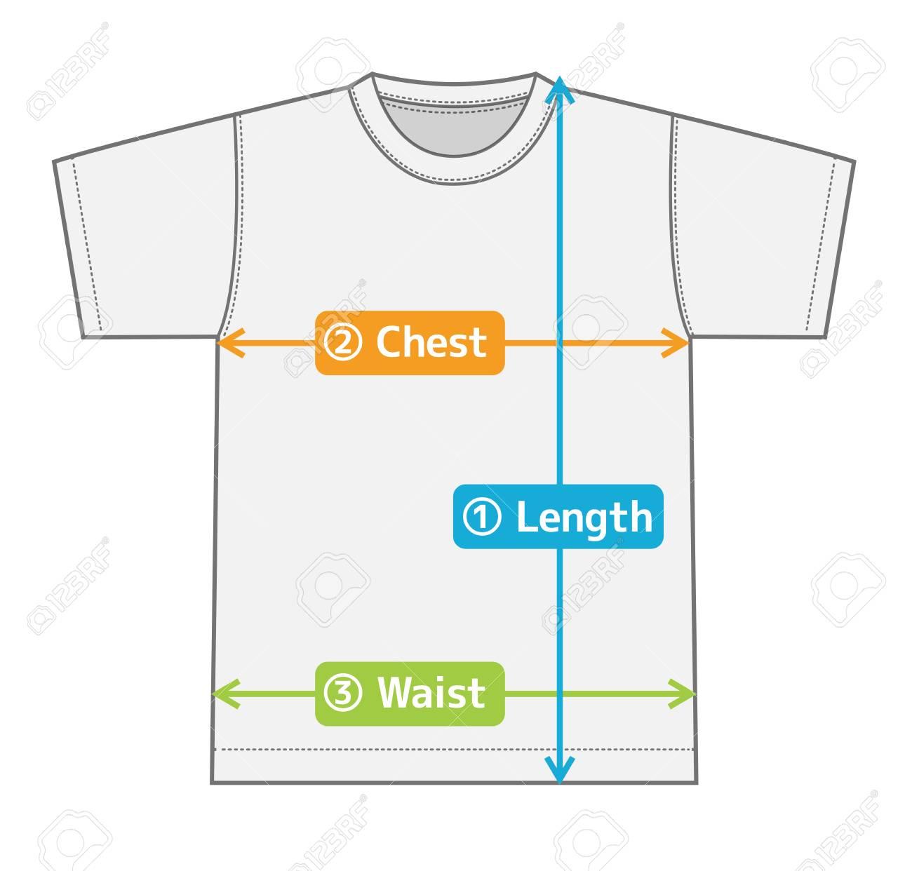 サイズの T シャツ イラスト図表 英語カラー バージョンのイラスト