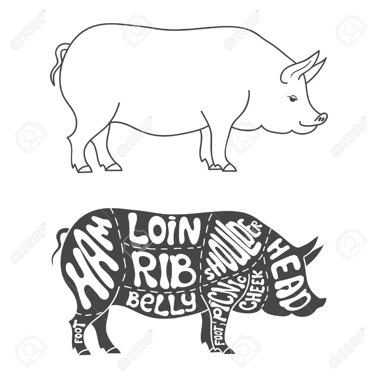 Pork Cuts Diagram. Hand Drawn Butcher Cuts Scheme Royalty Free ...