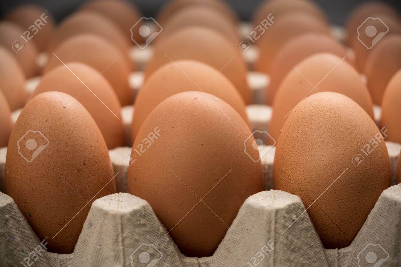 Brown cage-free chicken eggs in carton, close up - 95458100