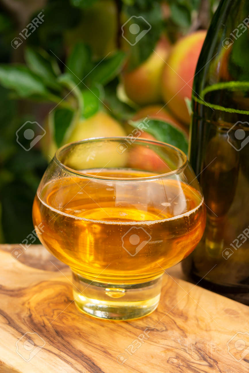 Glass of brut apple cider from Normandy served in garden in France and green apple tree with ripe red fruits on background - 157297377