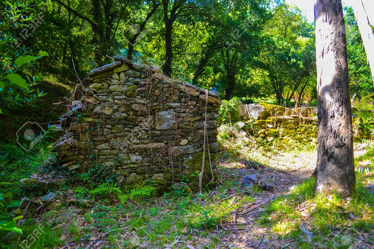 Old Stone House Deep In The Forest Abandoned Woods Stock Photo