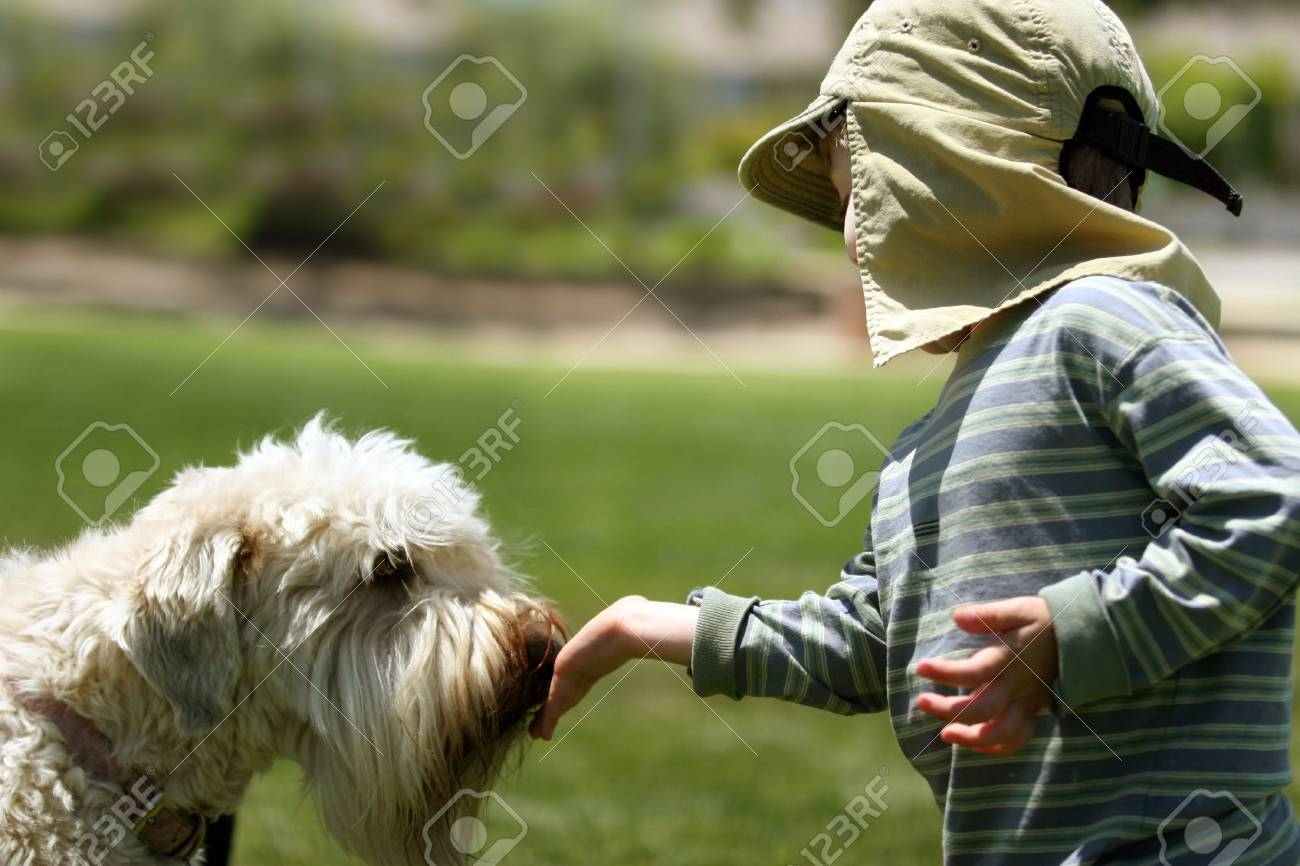 Boy feeding his dog in a park Stock Photo - 220785