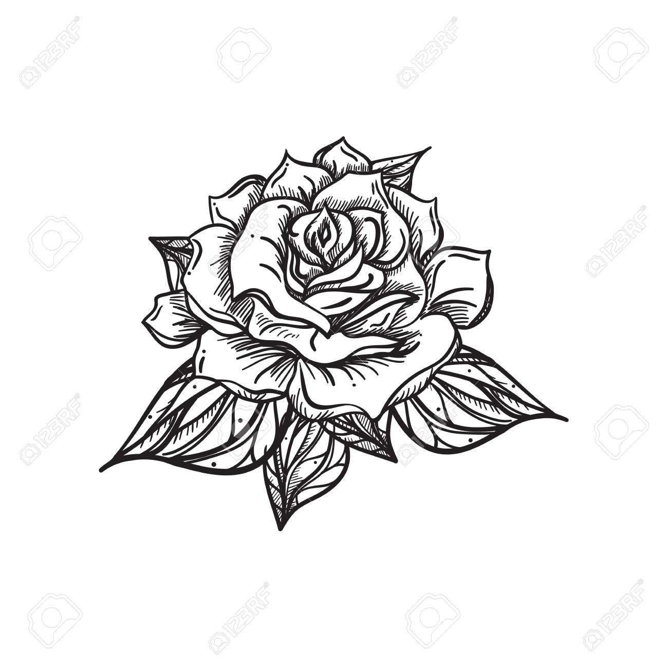 hand drawn wedding rose flower template for wedding holiday