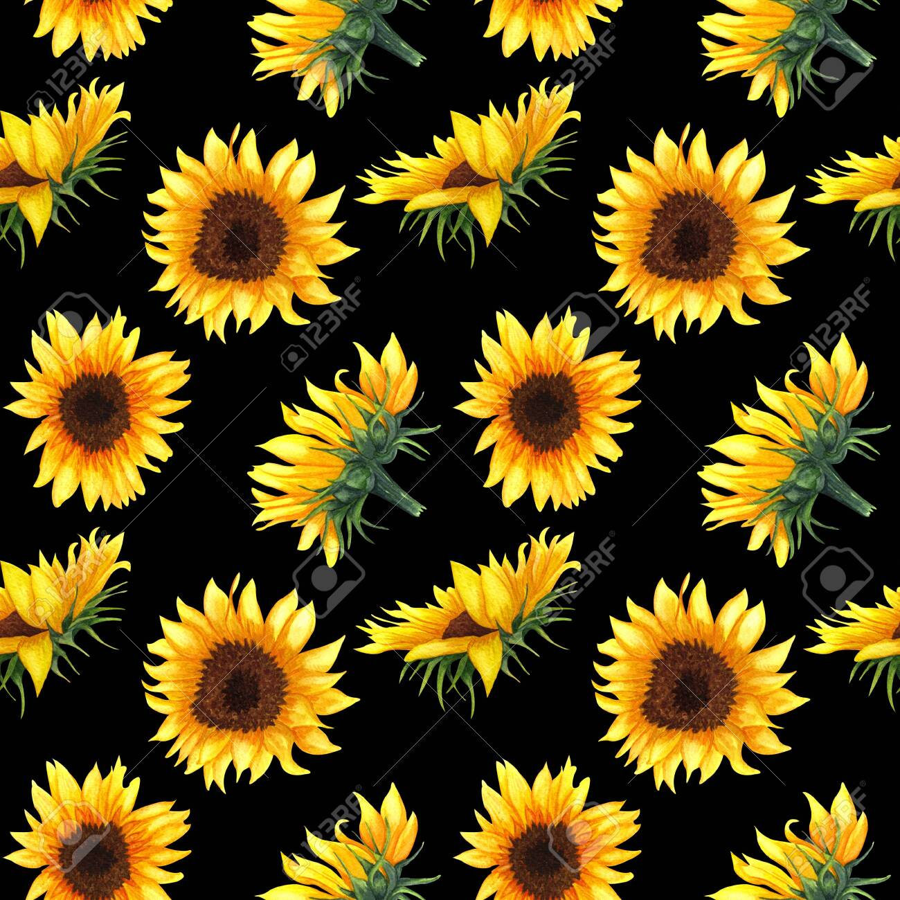 123380946 seamless pattern with sunflowers on black background collection decorative floral design elements fl