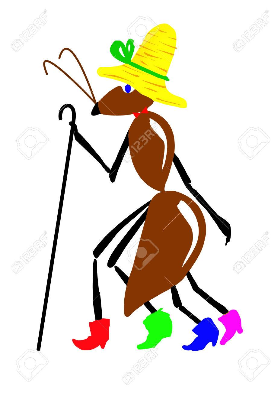 drawing ant on white background Stock Vector - 6240607