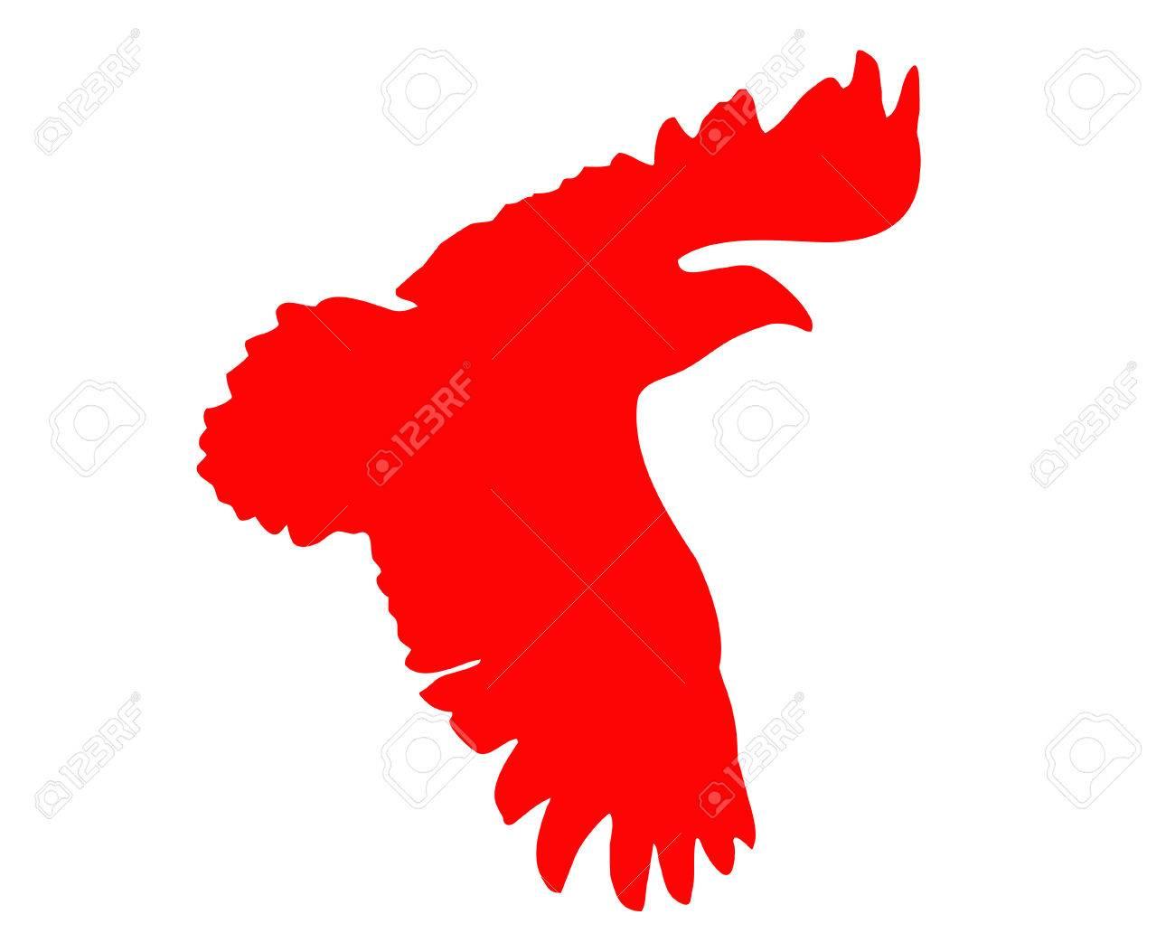 silhouette of the ravenous bird on white background Stock Vector - 6240526