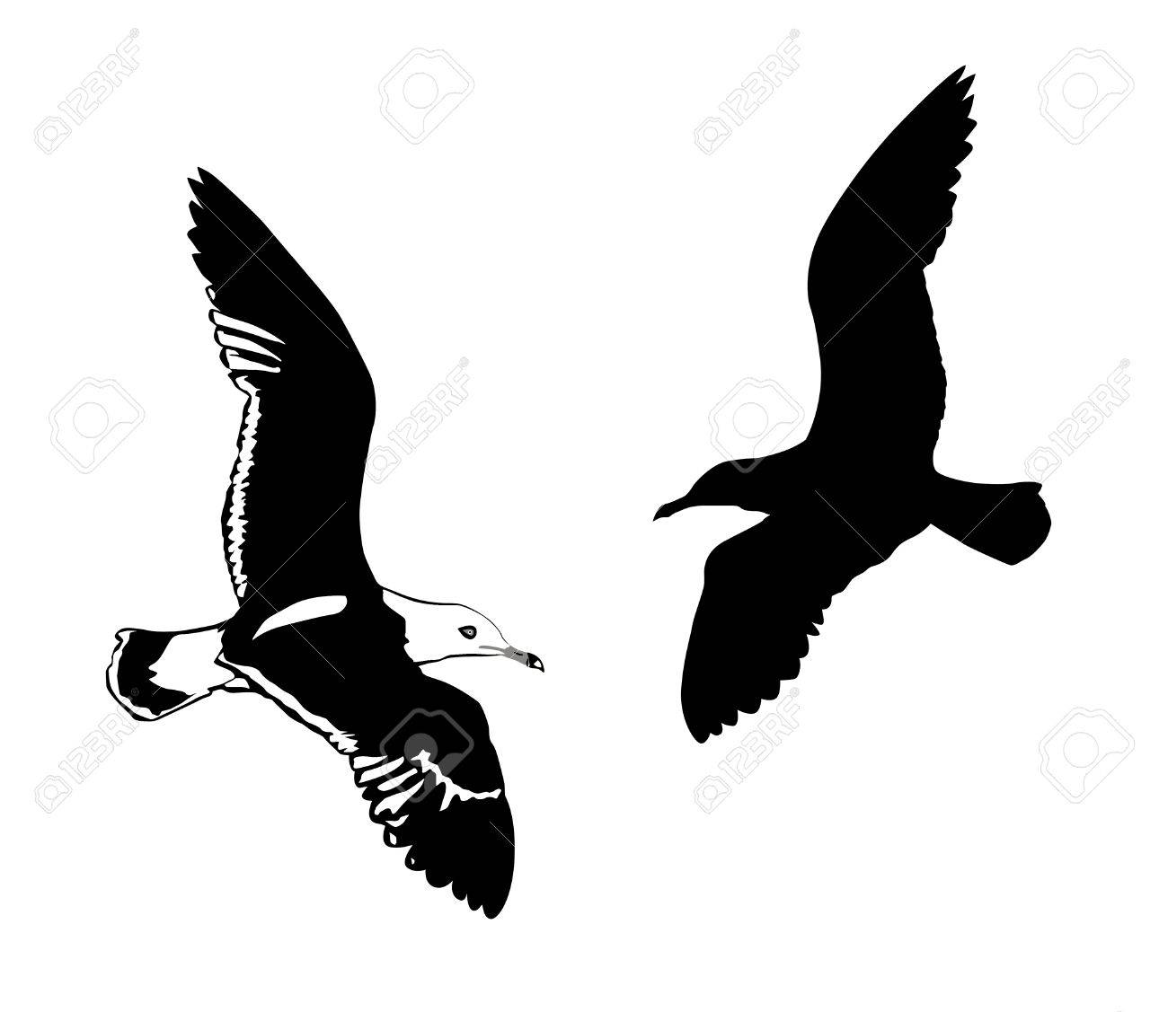 silhouettes flying birds on white background Stock Vector - 7038388