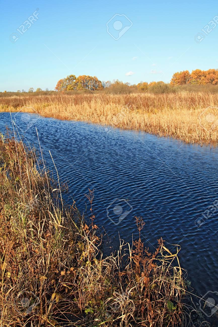 small river on autumn field Stock Photo - 7668316