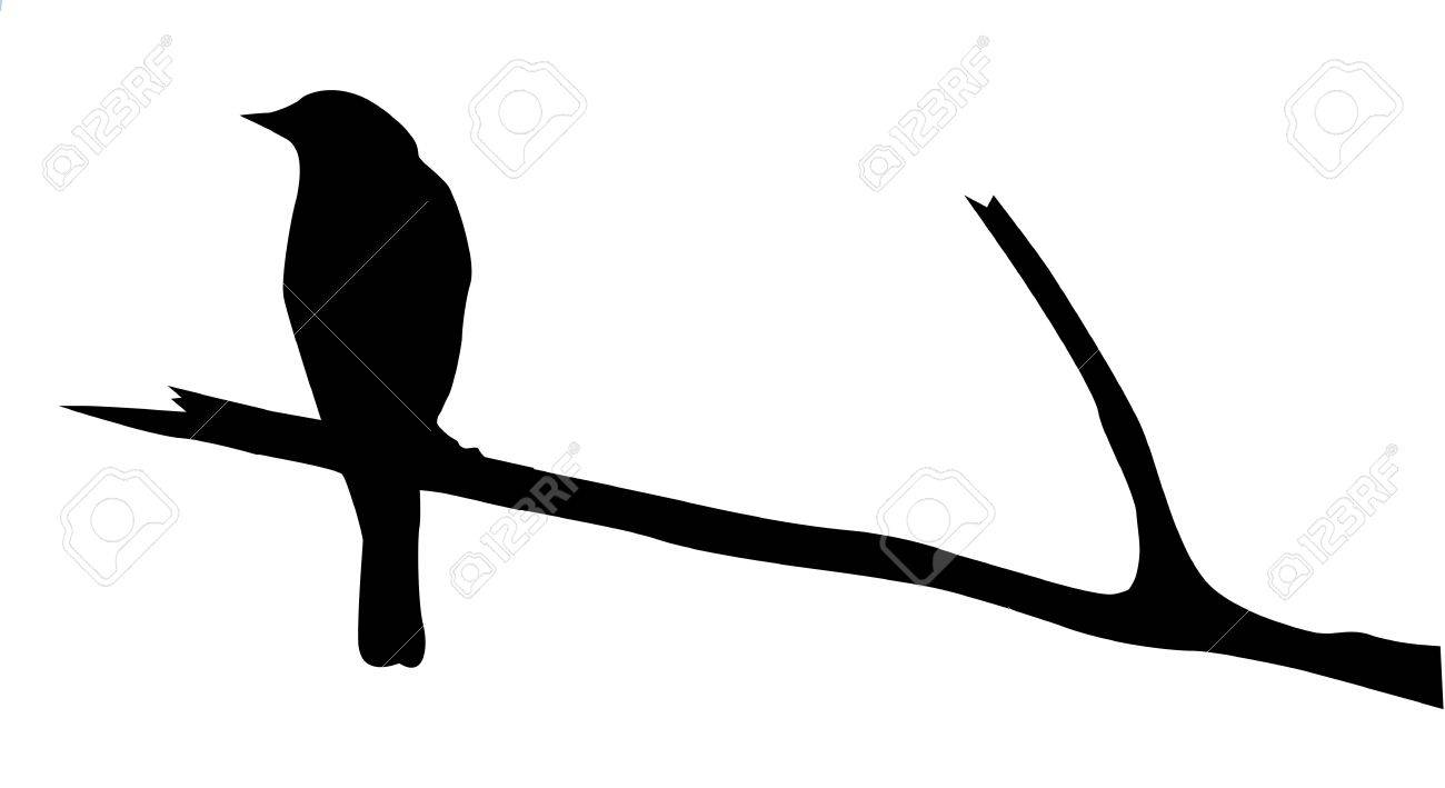 silhouette of the bird on branch Stock Vector - 7704953